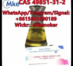 Factory Supply 2-Bromovalerophenone CAS 49851-31-2/5337-93-9/1009-14-9
