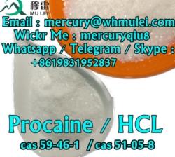 procaine , procaine base , procaine hcl , procaine hydrochloride , procaine powder , procaine chemicals, procaine supplier